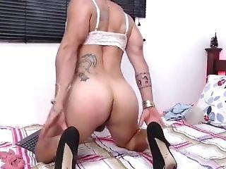 Muscular crossdressers big cocks Xxx Crossdressing Videos Free Transvestite Porn Tube Sexy Crossdresser Clips