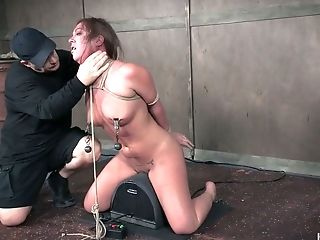 Hog Tied Obedient Whore Maddy Oreilly Gets Her Puffies Pinned Hard